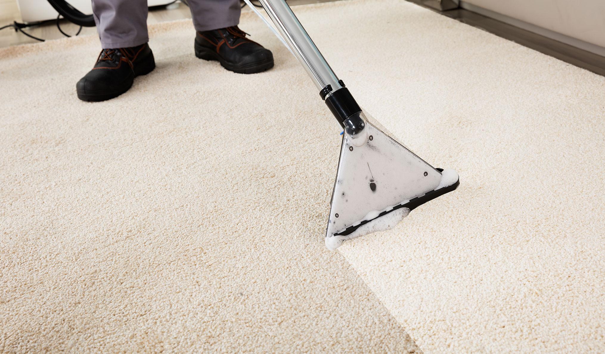 Reinigungsdienste - Teppichreinigung